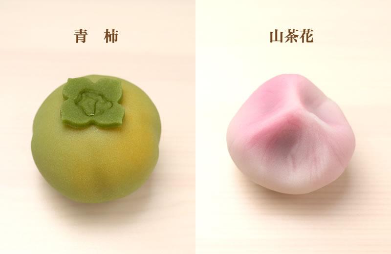 青柿 山茶花
